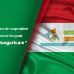 Programme de bourses de coopération avec le gouvernement Hongrois « Stipendium Hungaricum »