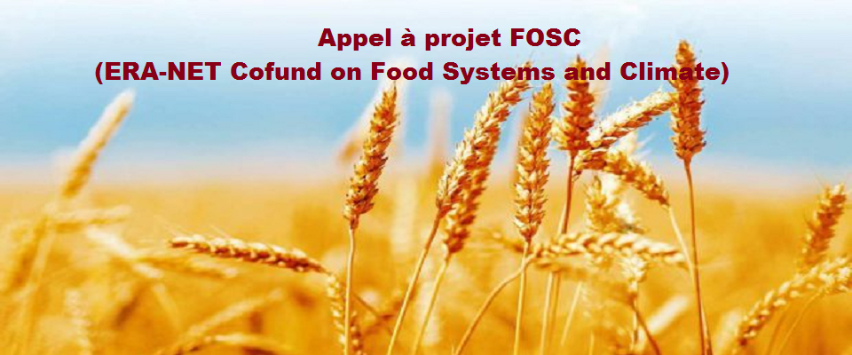 Appel à projets FOSC (ERA-NET Cofund on Food Systems and Climate)